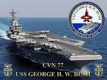 Bush-CV.jpg