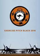 Pitch Black.jpg