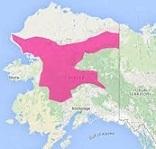 RED FLAG-Alaska2.jpg